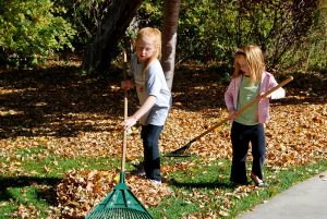 girls-raking